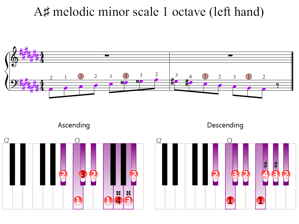 Figure 2. Zoomed keyboard and highlighted point of turning finger (A-sharp melodic minor scale 1 octave (left hand))