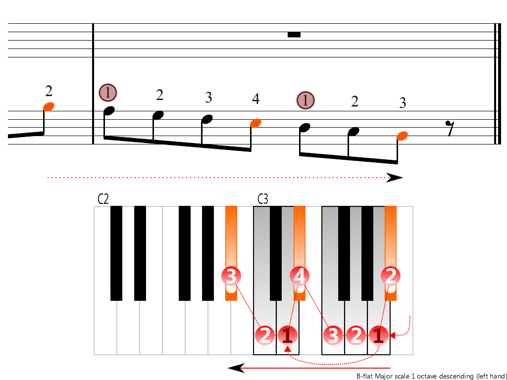 Figure 4. Descending of the B-flat Major scale 1 octave (left hand)