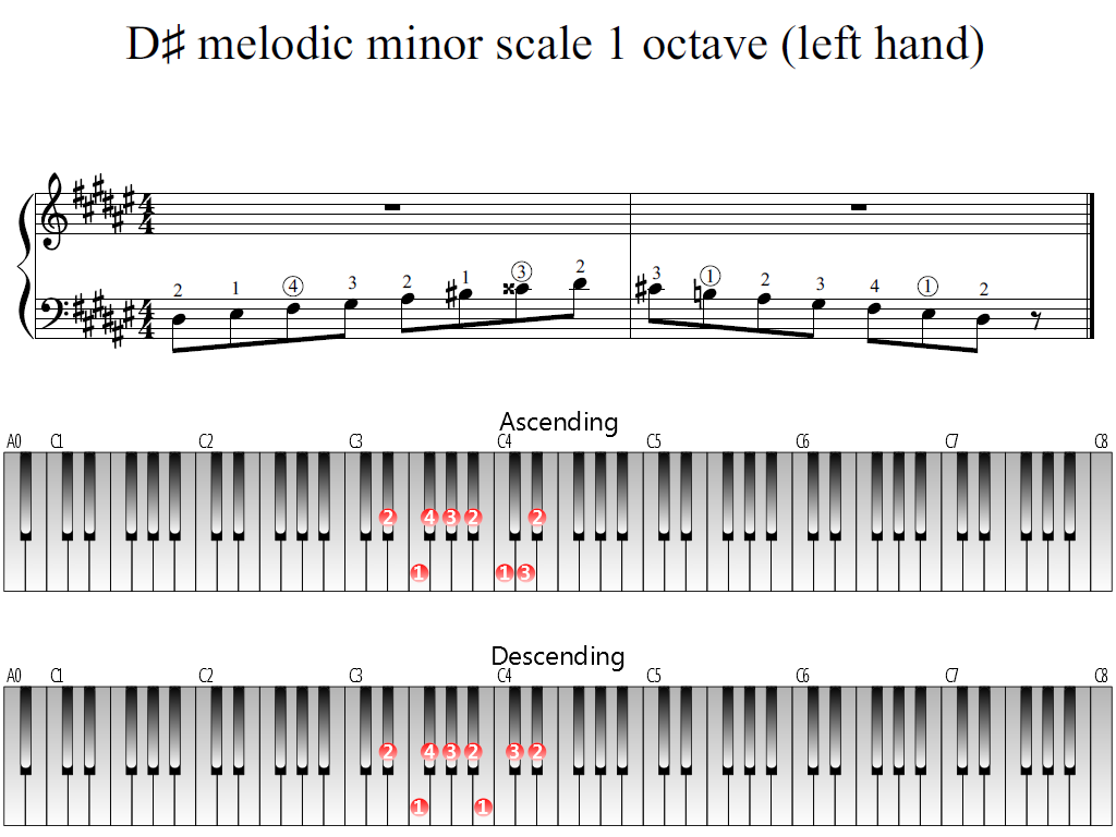 Figure 1. Whole view of the D-sharp melodic minor scale 1 octave (left hand)