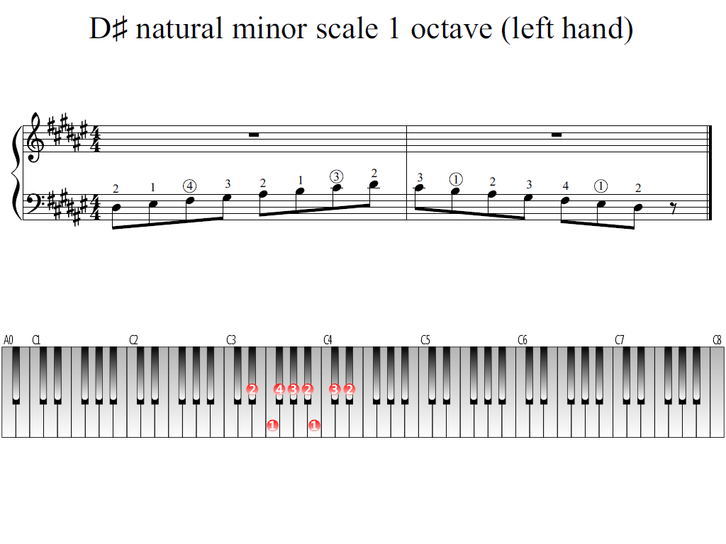 Figure 1. Whole view of the D-sharp natural minor scale 1 octave (left hand)