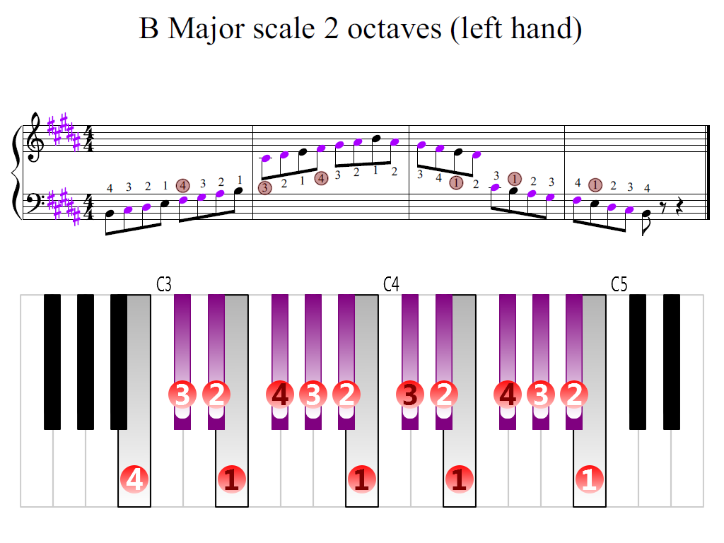 Figure 2. Zoomed keyboard and highlighted point of turning finger (B Major scale 2 octaves (left hand))