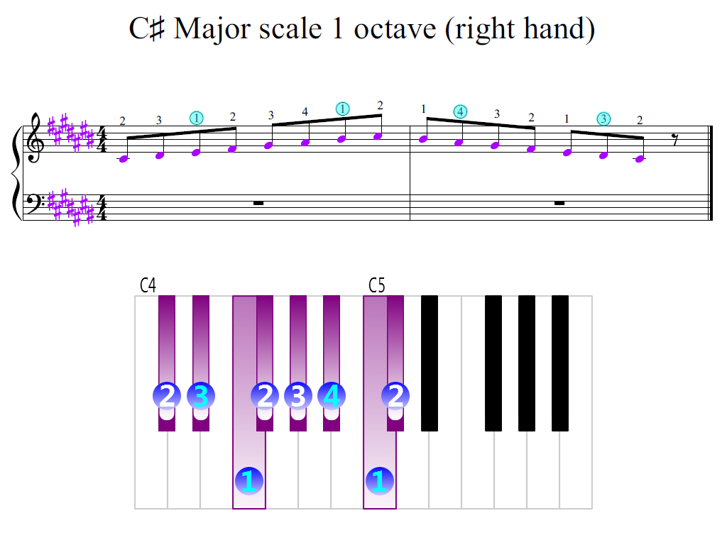 Figure 2. Zoomed keyboard and highlighted point of turning finger (C-sharp Major scale 1 octave (right hand))
