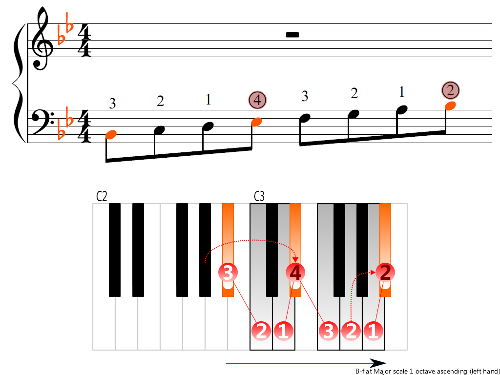Figure 3. Ascending of the B-flat Major scale 1 octave (left hand)