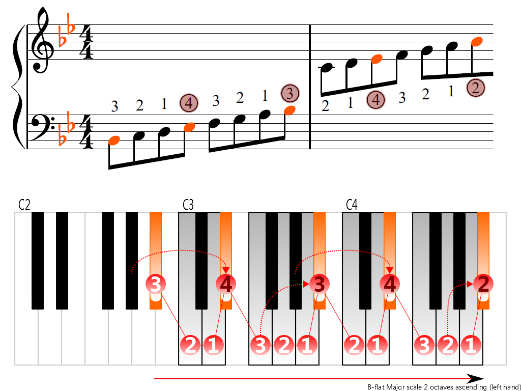 Figure 3. Ascending of the B-flat Major scale 2 octaves (left hand)