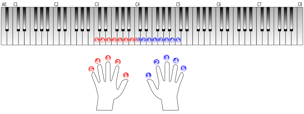 keyboard, hands and fingering